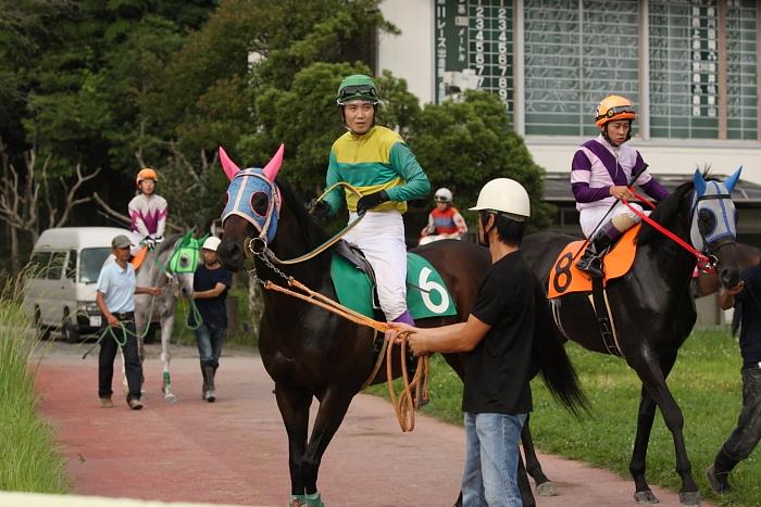 2009年7月19日(日) 高知競馬 11R 一発逆転 ファイナルレース D6 記者選抜_a0077663_185095.jpg