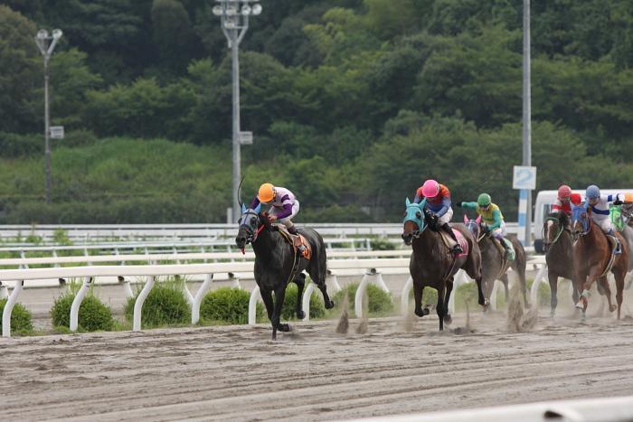 2009年7月19日(日) 高知競馬 11R 一発逆転 ファイナルレース D6 記者選抜_a0077663_18511599.jpg
