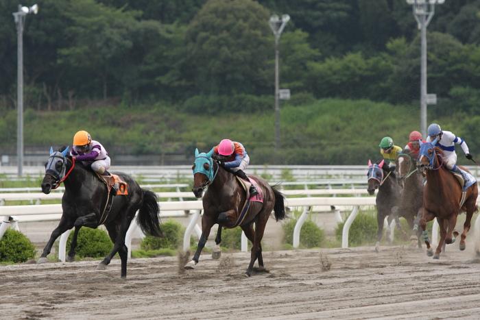 2009年7月19日(日) 高知競馬 11R 一発逆転 ファイナルレース D6 記者選抜_a0077663_18512370.jpg