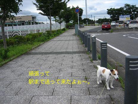 c0179472_17124865.jpg