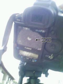 f0174289_8521276.jpg