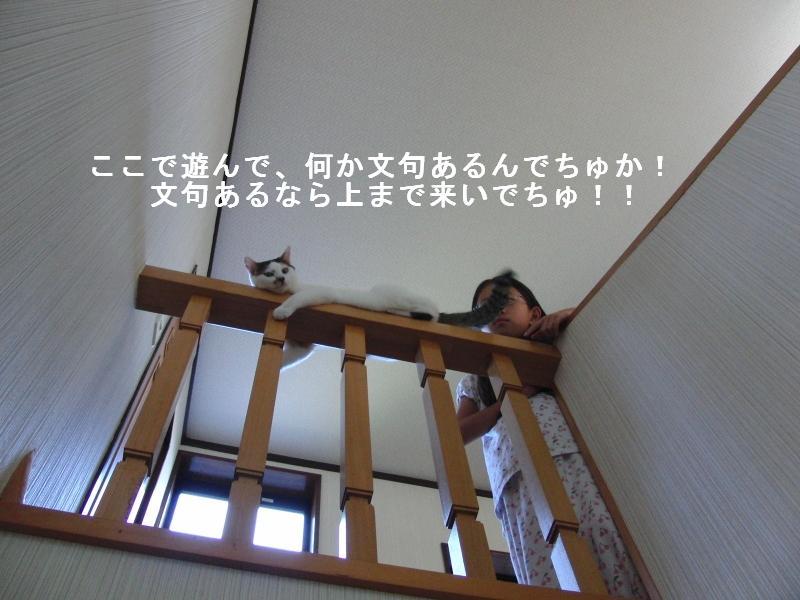 e0171996_10432955.jpg