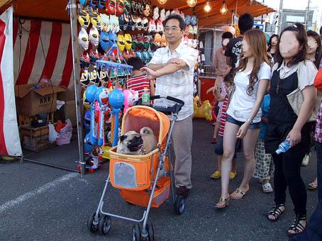 土崎港曳山(ひきやま)祭り_f0019498_20114389.jpg