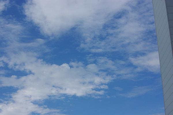 梅雨に戻った_d0147812_17275042.jpg