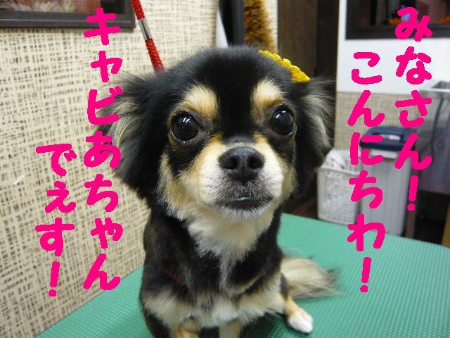 CHECK!!&疲れたけど・・・2連発!!_b0130018_18304735.jpg
