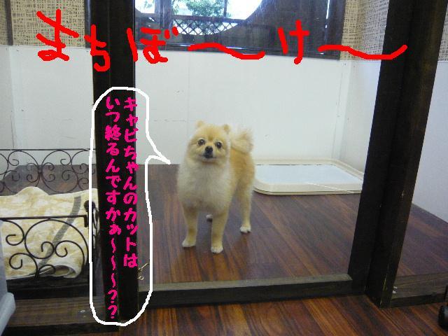 CHECK!!&疲れたけど・・・2連発!!_b0130018_18321117.jpg
