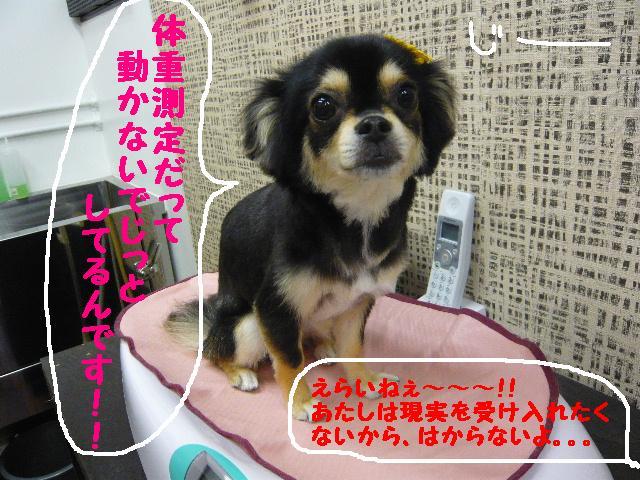 CHECK!!&疲れたけど・・・2連発!!_b0130018_1832315.jpg