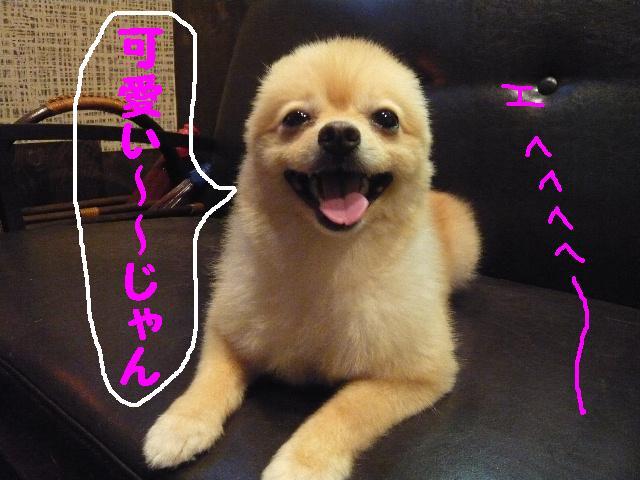 CHECK!!&疲れたけど・・・2連発!!_b0130018_18325786.jpg