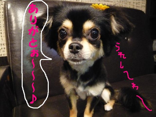 CHECK!!&疲れたけど・・・2連発!!_b0130018_1833328.jpg