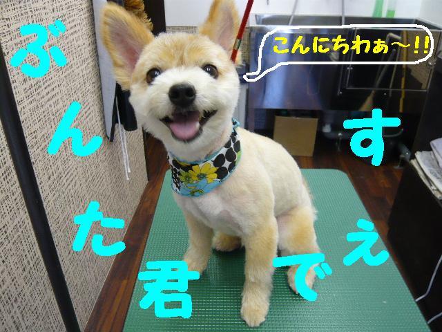 CHECK!!&疲れたけど・・・2連発!!_b0130018_18343562.jpg