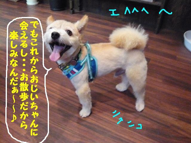 CHECK!!&疲れたけど・・・2連発!!_b0130018_18351441.jpg