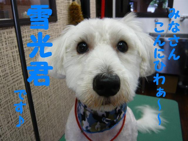 CHECK!!&疲れたけど・・・2連発!!_b0130018_18365220.jpg