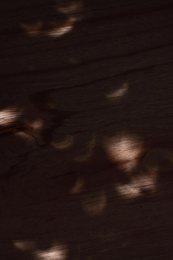 皆既日食(部分日食)というより、むしろ木漏れ日 ~変更:写真リサイズ~_b0157849_1162324.jpg