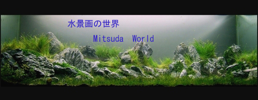 Mitsuda World_a0046952_167831.jpg