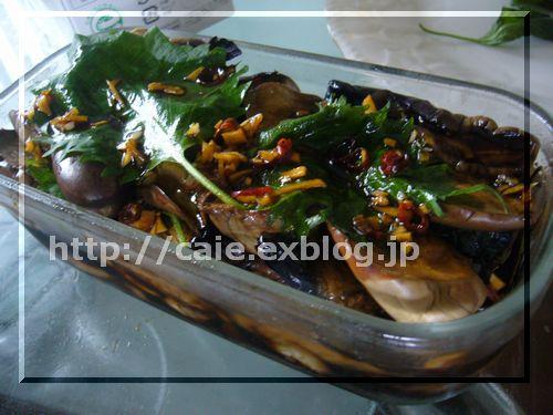 茄子の紫蘇キムチ漬_a0048852_22471046.jpg