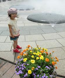 ひなちゃんと水族館へ その一_f0139963_631466.jpg