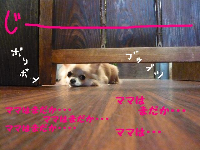 じ~~~~~~3連発!!_b0130018_15572027.jpg
