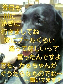 f0148927_640837.jpg