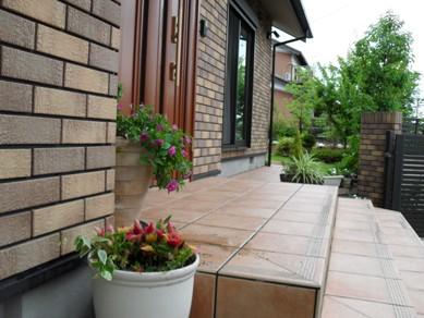 我が家の庭を夏色に_b0100062_20123246.jpg