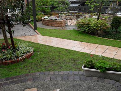我が家の庭を夏色に_b0100062_203442.jpg