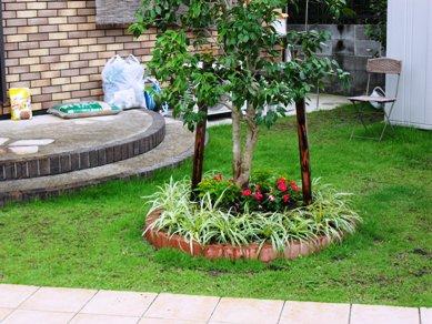 我が家の庭を夏色に_b0100062_2074664.jpg