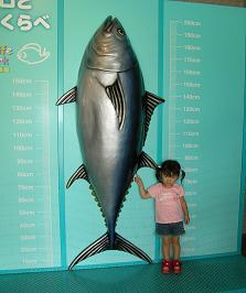 ひなちゃんと水族館へ その二_f0139963_5521046.jpg