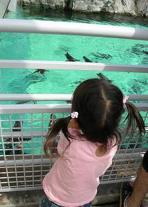 ひなちゃんと水族館へ その二_f0139963_6445495.jpg