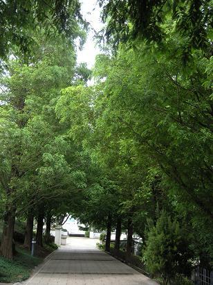 横浜西洋館の一つ「外交官の家」_c0128489_261983.jpg