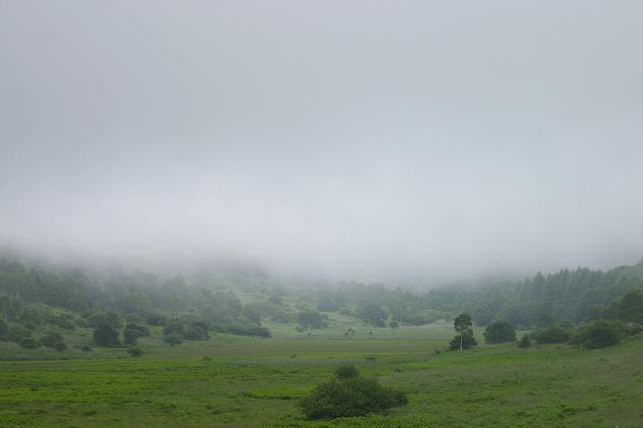 今日の霧が峰高原。~その3_f0163491_201854.jpg