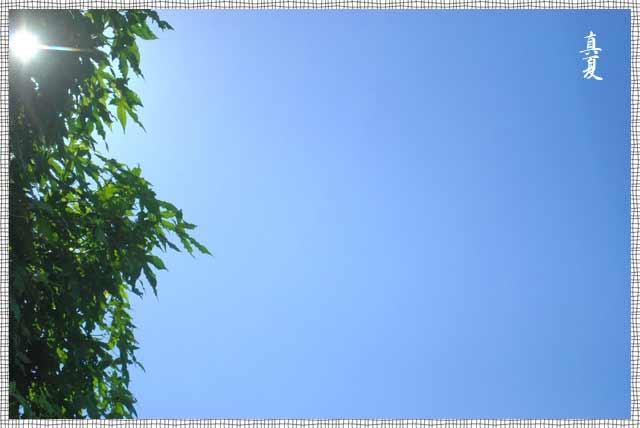 b0136300_1711034.jpg