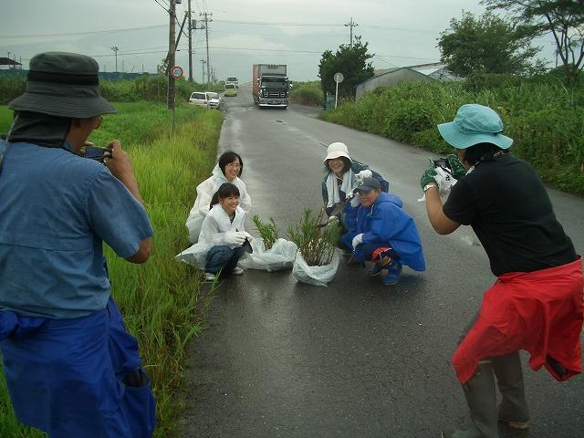 浮島ヶ原自然公園のタコノアシ救出作戦!_f0141310_23241930.jpg