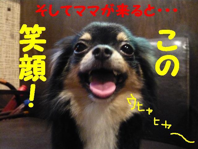 5連続紹介!!_b0130018_18304466.jpg