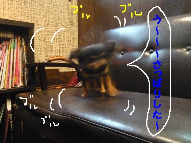 5連続紹介!!_b0130018_18361652.jpg