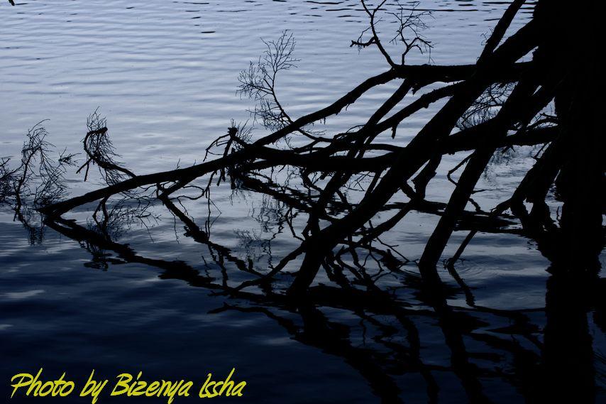 『湖面のささやき』_d0086248_1047539.jpg
