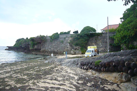 beach (yakitori) party._c0153966_2348227.jpg