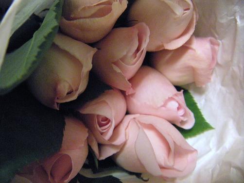 ブーケの前の花たち_c0128489_020554.jpg