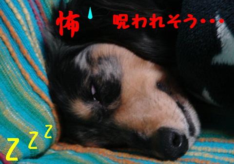 f0195891_15293692.jpg