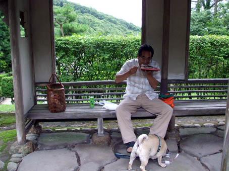 日本庭園でランチ_f0019498_17265534.jpg