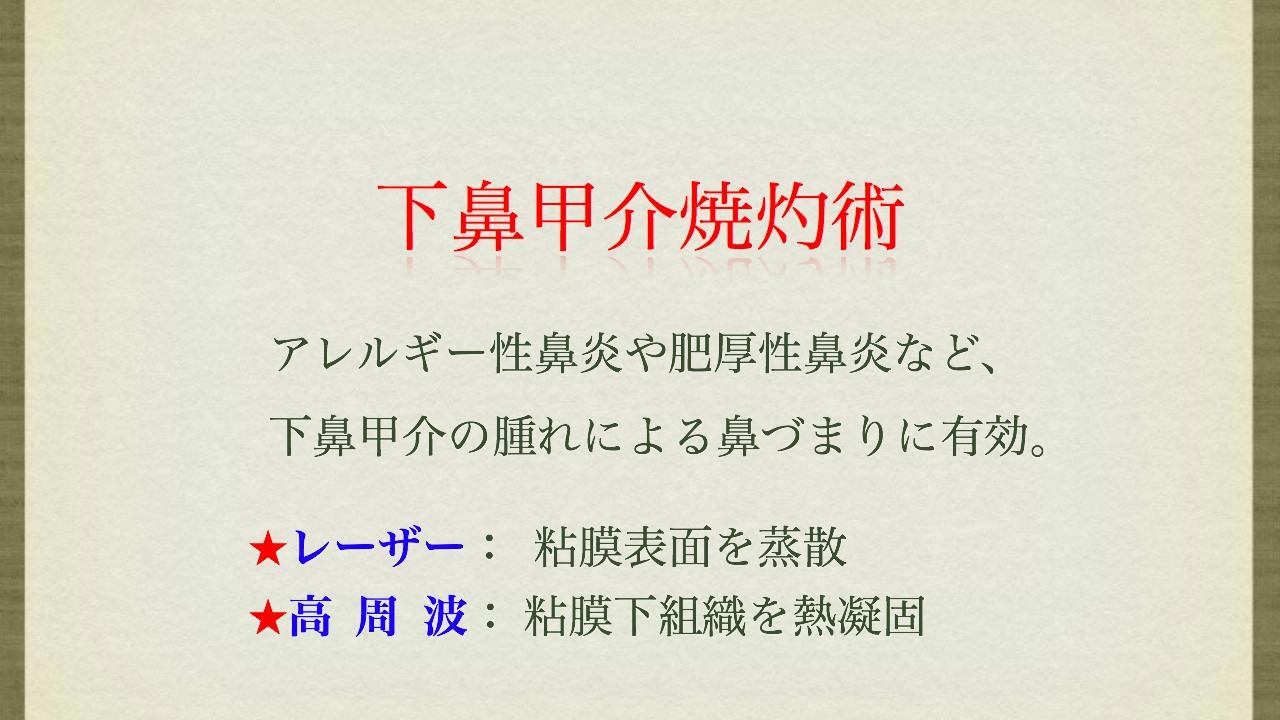 e0178010_2229734.jpg
