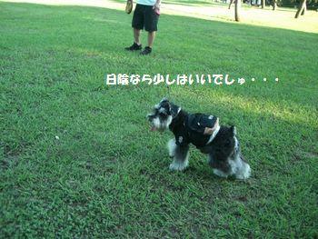 f0197317_22285077.jpg
