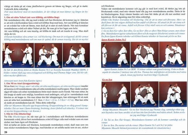 武道が障害者のリハビリテーションに非常によい効果_f0012718_12243019.jpg