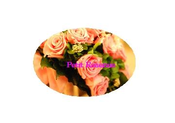 d0151229_23101636.jpg