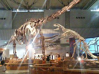恐竜博2009_d0009833_226110.jpg