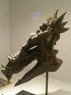 恐竜博2009_d0009833_2275474.jpg