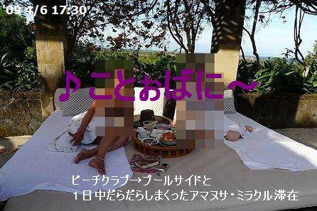 a0074049_17351369.jpg