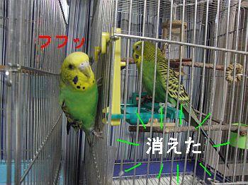 f0196665_23183845.jpg