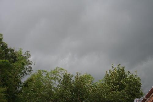 梅雨空とスイカ!!_b0136683_1836549.jpg