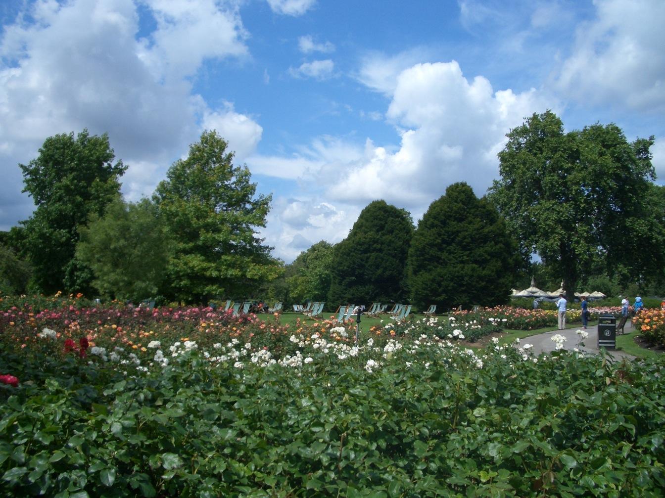 Queen Mary\'s Garden_a0137487_1838987.jpg