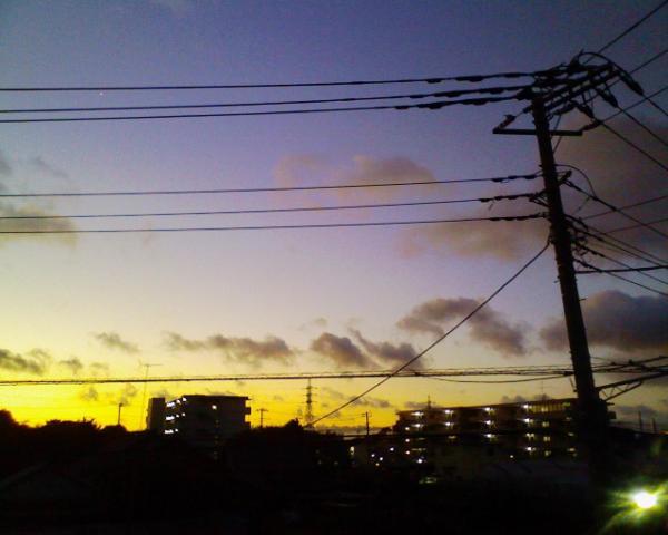 朝だ_f0086488_4265771.jpg