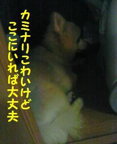 f0066289_20573119.jpg